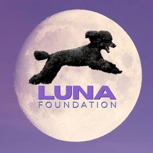 Jessica Broitman Foundation logo